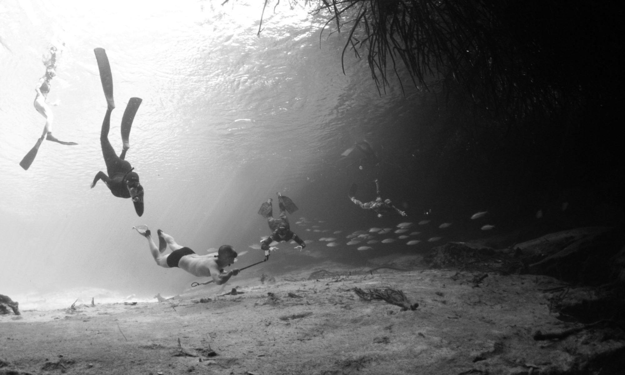 Cenotes Adventure 2019